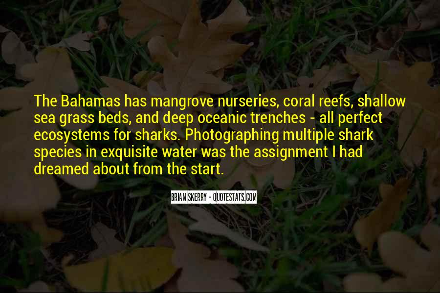 Quotes About Ecosystems #1196676