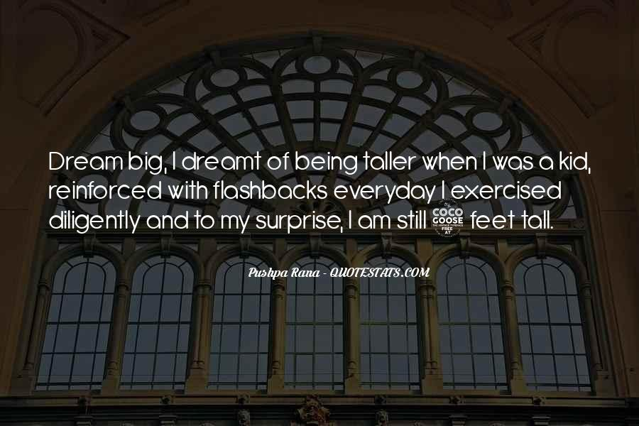 Quotes About My Big Dream #644472