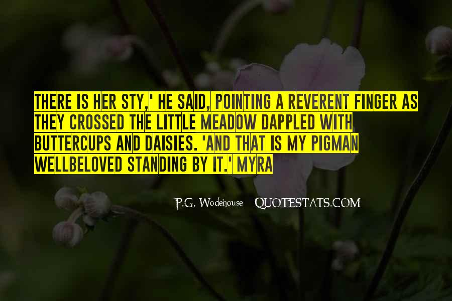 Quotes About Pointing The Finger At Others #73247