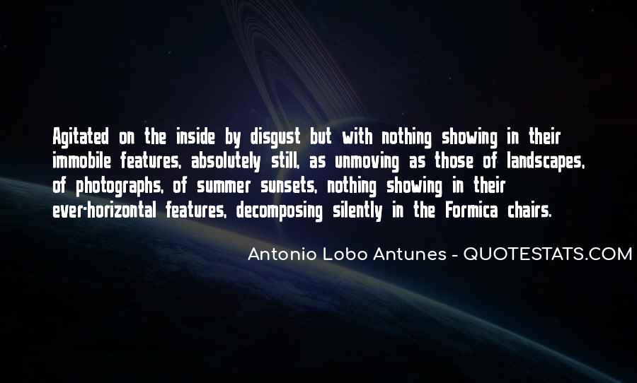 Quotes About Summer Being Here #49986