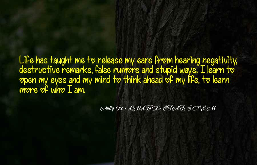 Quotes About Others Negativity #176797