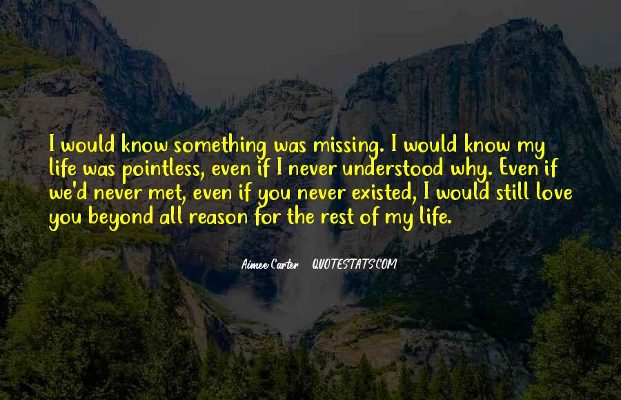 Quotes About Love That Never Existed #1464719