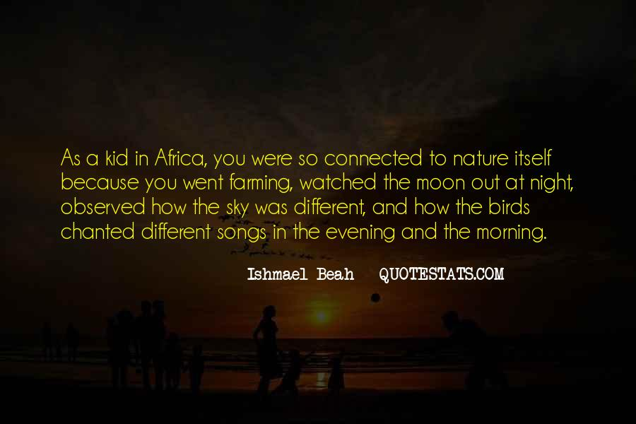 Quotes About Birds And Nature #1256661
