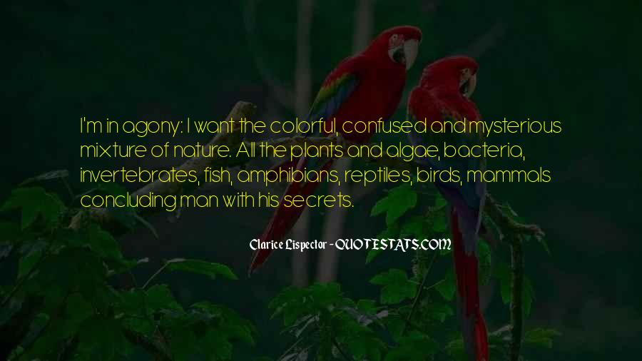 Quotes About Birds And Nature #235459