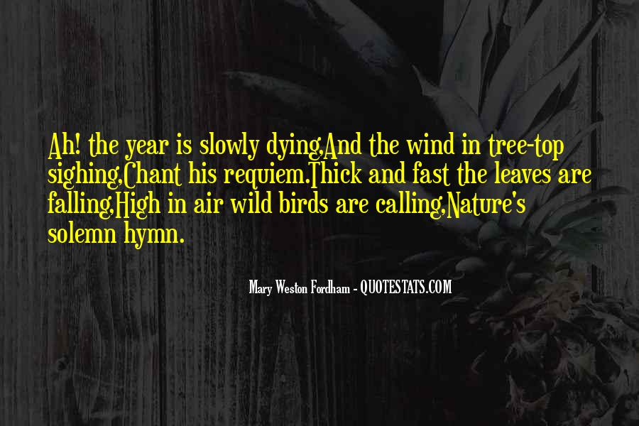 Quotes About Birds And Nature #246259