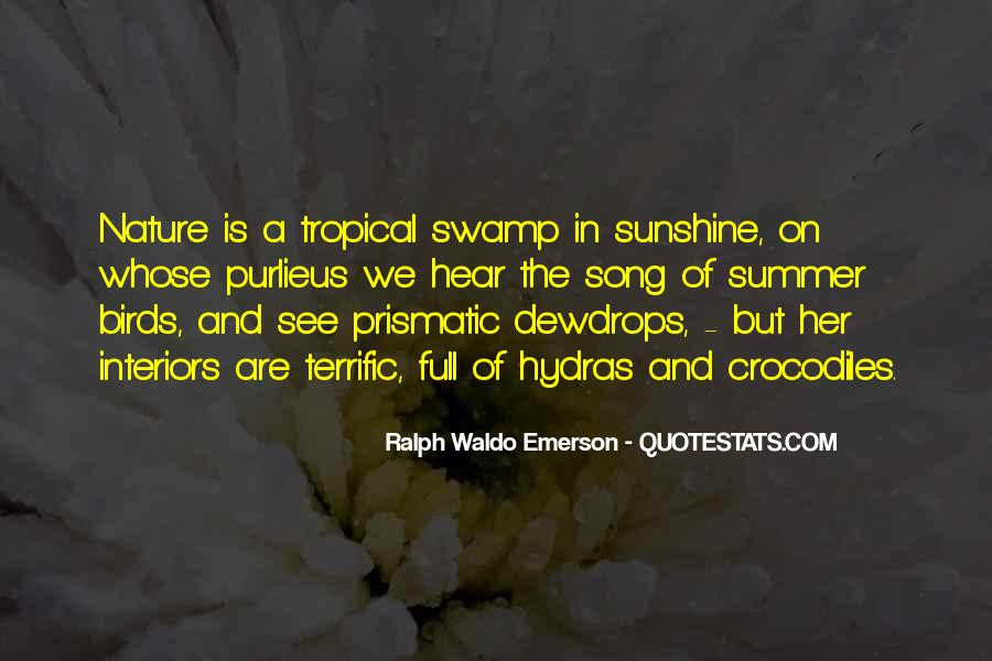 Quotes About Birds And Nature #516409