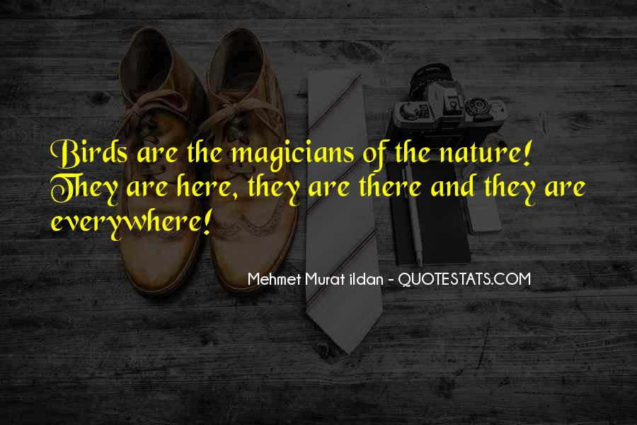 Quotes About Birds And Nature #861943