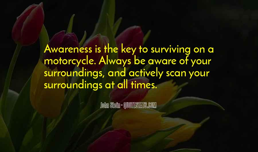 Quotes About Surviving Bad Times #983268