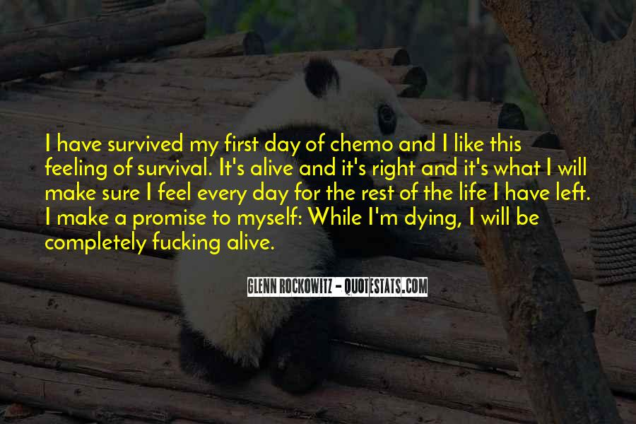 Quotes About Pet Cat Dying #17083