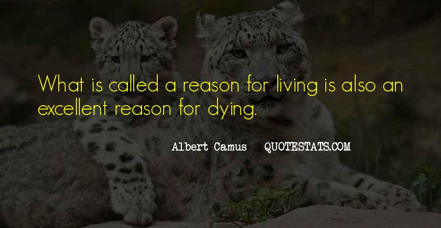 Quotes About Pet Cat Dying #19775