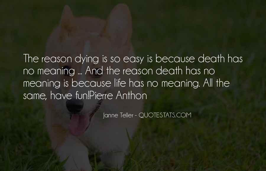 Quotes About Pet Cat Dying #35188