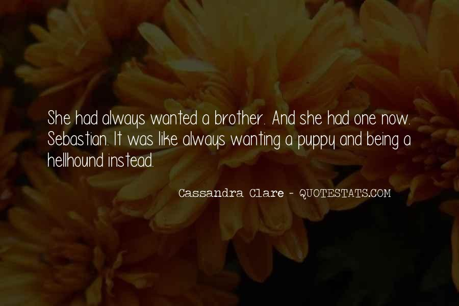 Quotes About Your Brother Always Being There #1575209