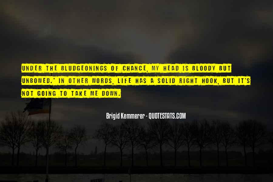 Quotes About Another Chance At Life #88312