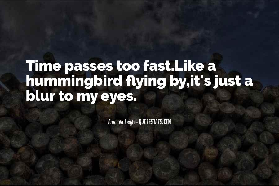 Quotes About Time Passes #155754