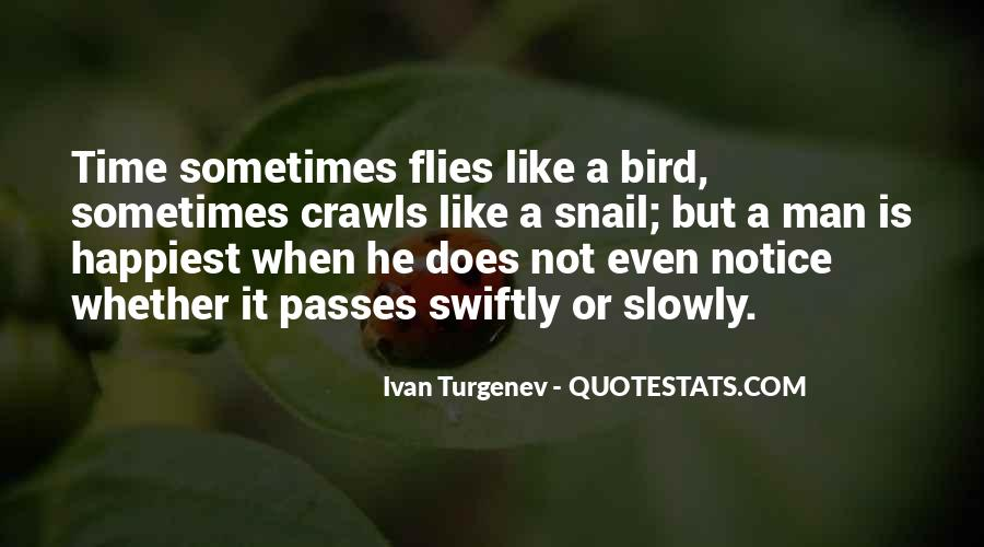 Quotes About Time Passes #35492