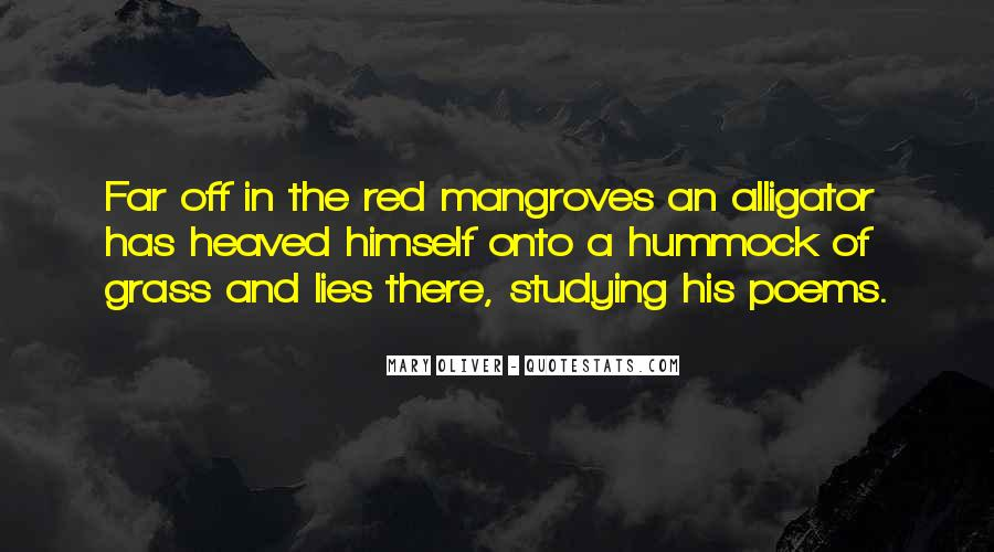 Quotes About Mangroves #1396044