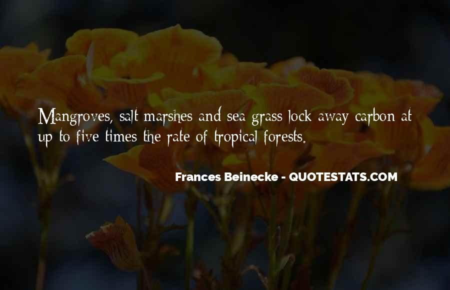 Quotes About Mangroves #271607