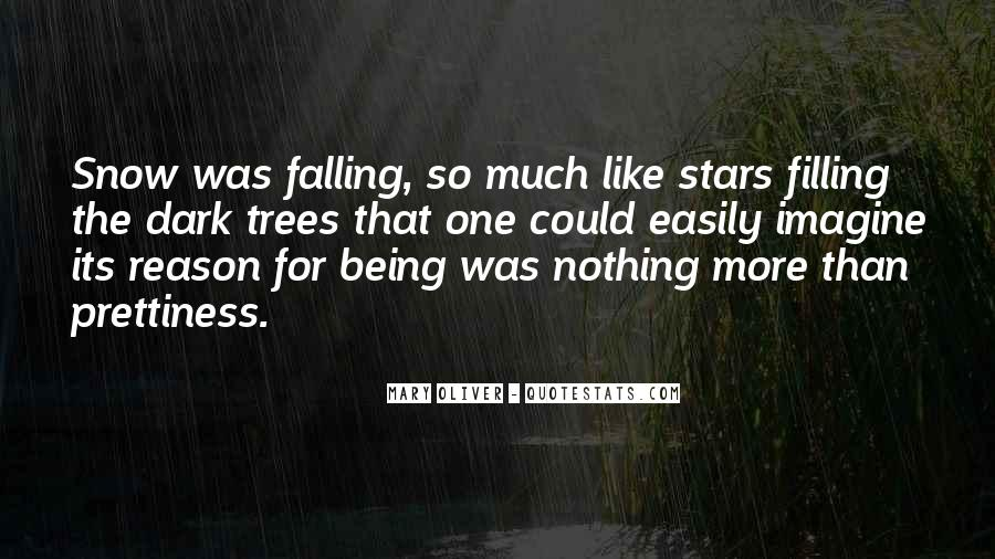 Quotes About Falling Stars #750363