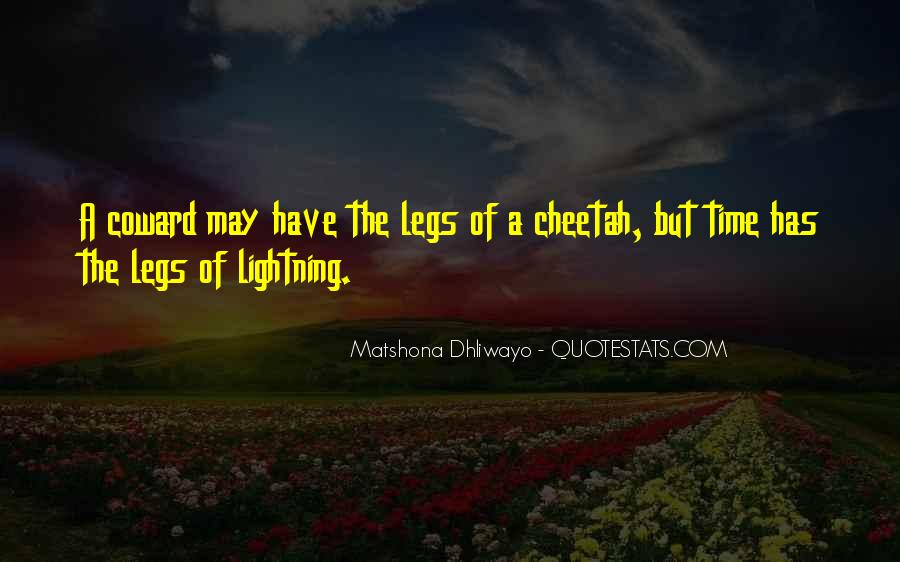 Quotes About Cheetah #293343