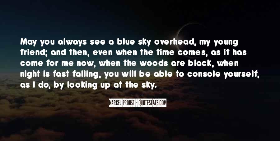 Quotes About Looking Up To The Sky #572094