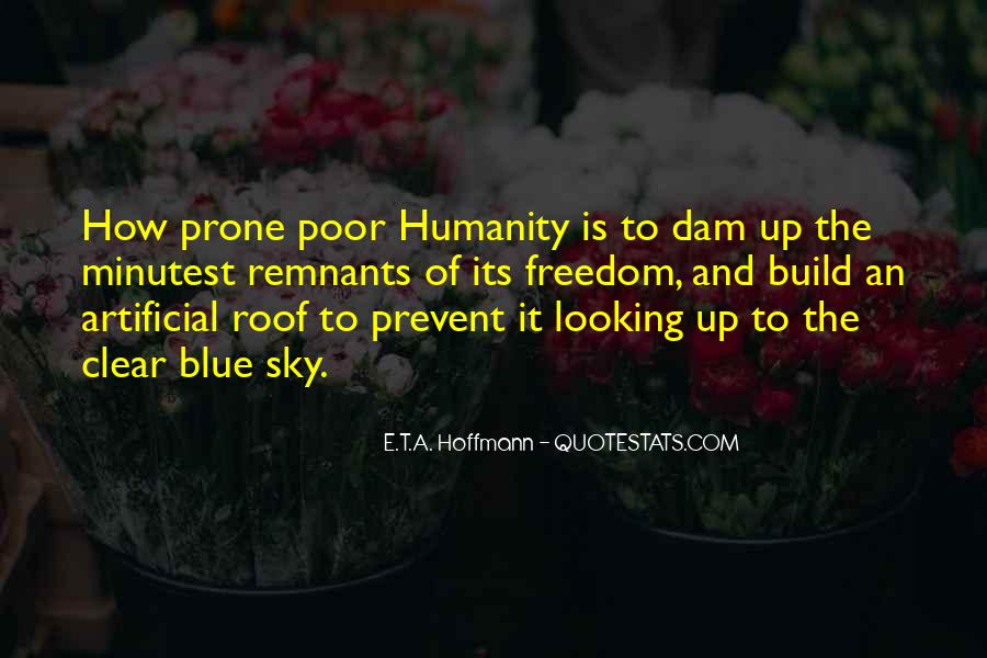 Quotes About Looking Up To The Sky #897767