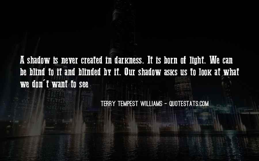 Quotes About Seeing Light In Darkness #227754