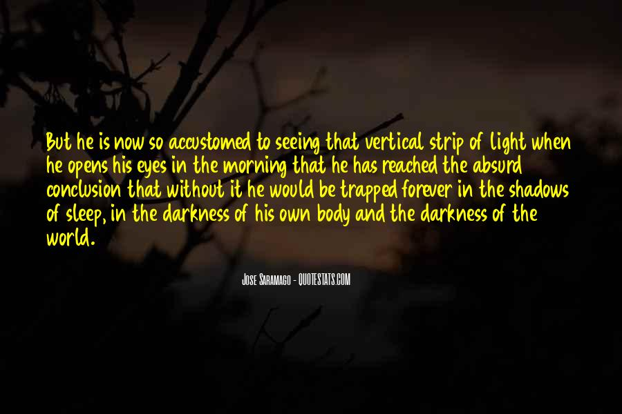 Quotes About Seeing Light In Darkness #363575