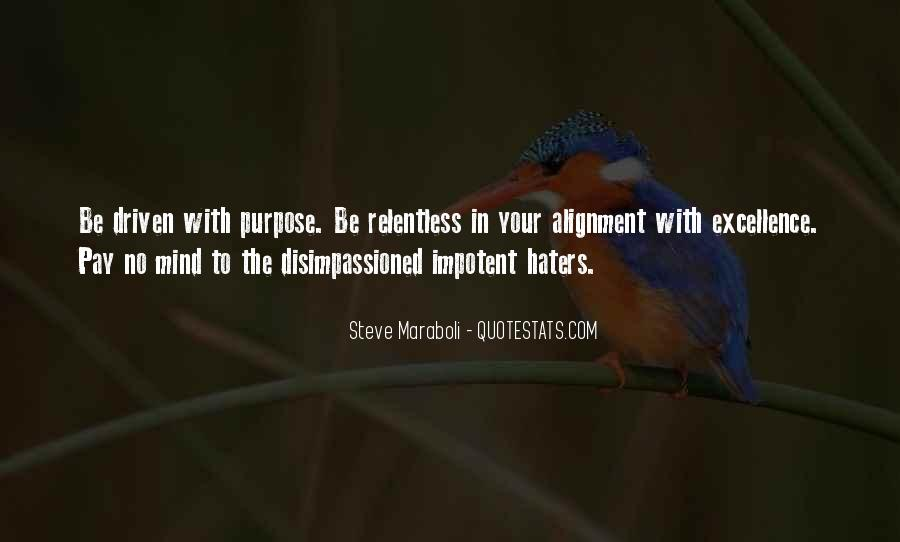 Quotes About Success And Haters #206194