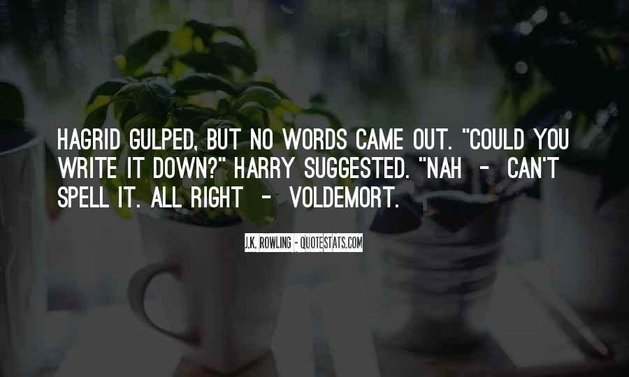 Quotes About Voldemort #344087