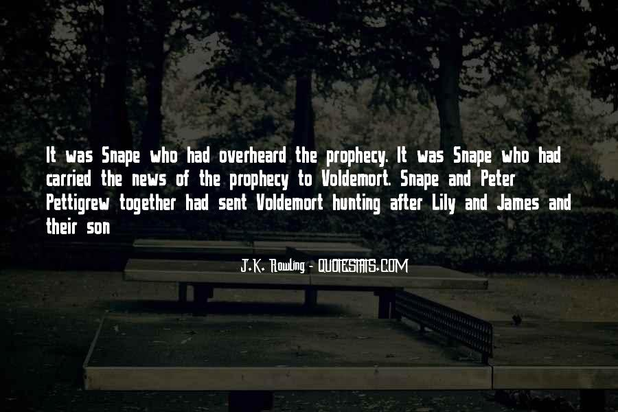 Quotes About Voldemort #513715