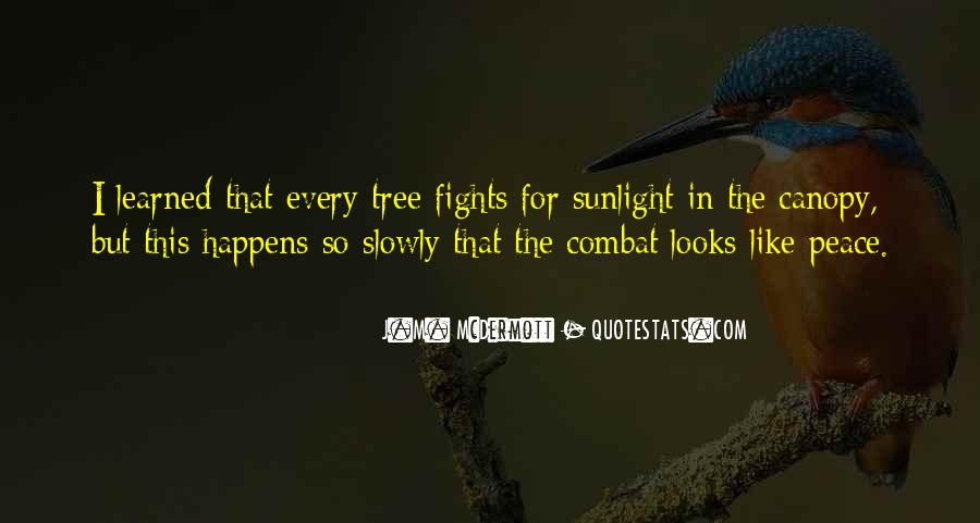 Quotes About Tree Canopy #736732
