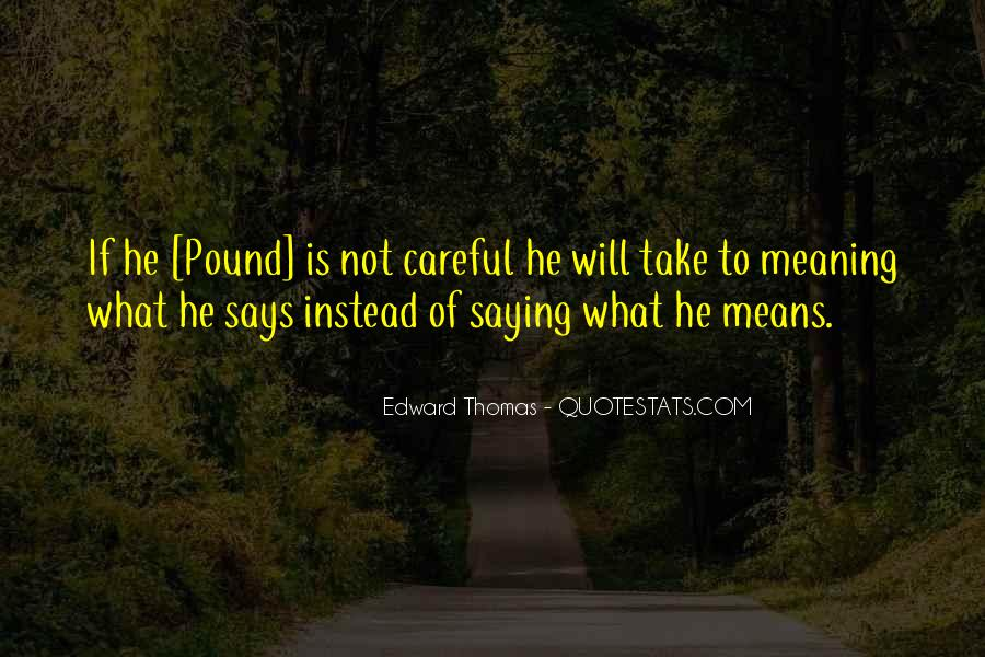 Quotes About Saying Something And Not Meaning It #40155