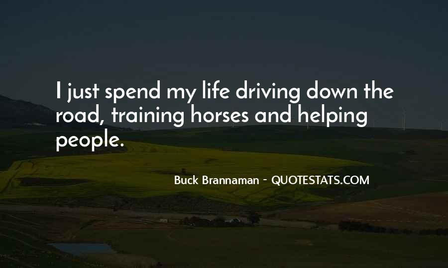 Quotes About Training Horses #360483