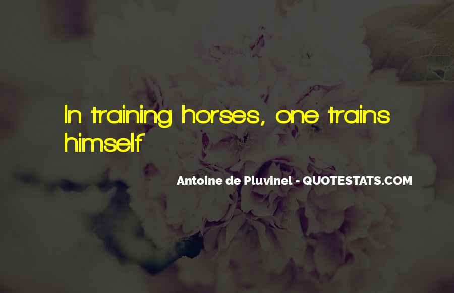 Quotes About Training Horses #418424