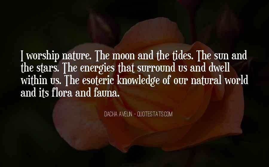 Quotes About The Moon Stars And Sun #117405