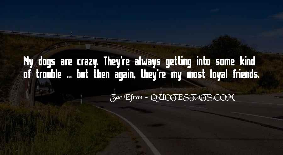 Quotes About Crazy Fun Friends #1163095