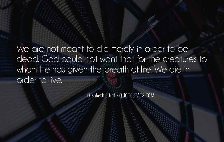 Quotes About We Are Not Meant To Be #1152844
