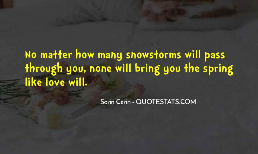 Quotes About Snowstorms #1397910