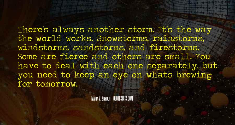 Quotes About Snowstorms #447930