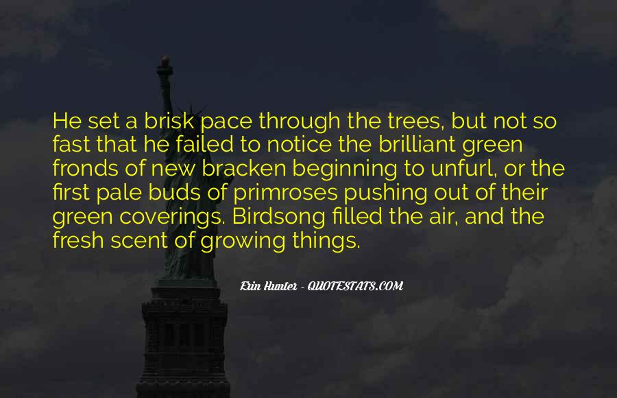 Quotes About Growing Up And Trees #1449081