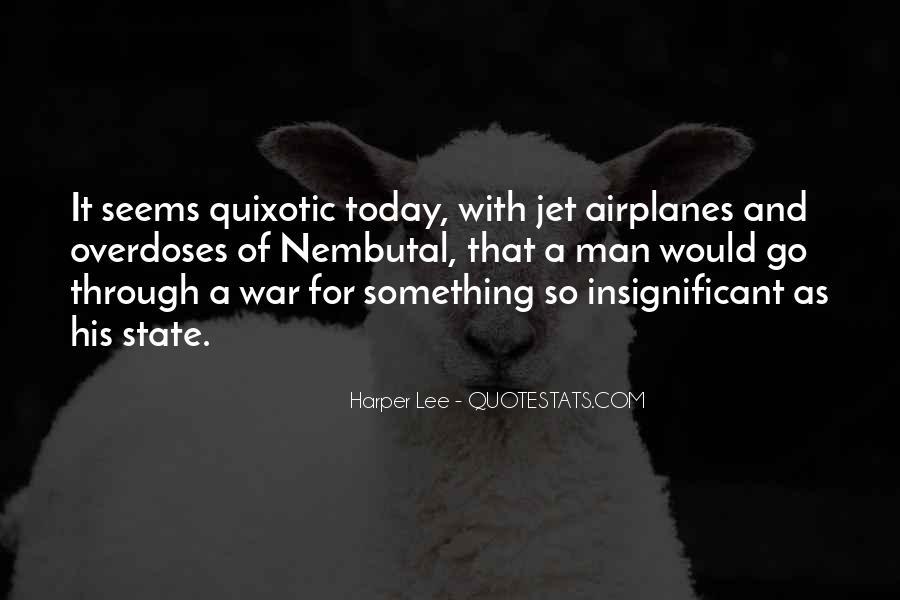 Quotes About Quixotic #274395