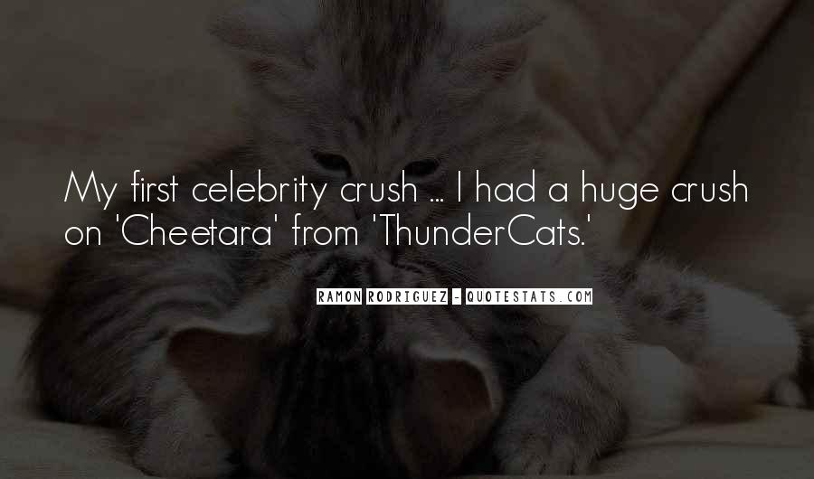 Quotes About Having A Crush On A Celebrity #641276