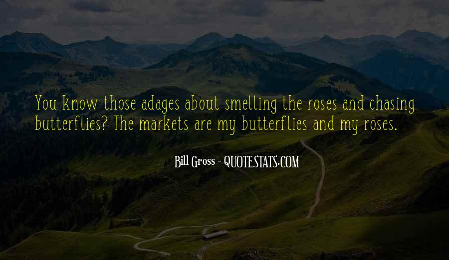 Quotes About Chasing Butterflies #256425