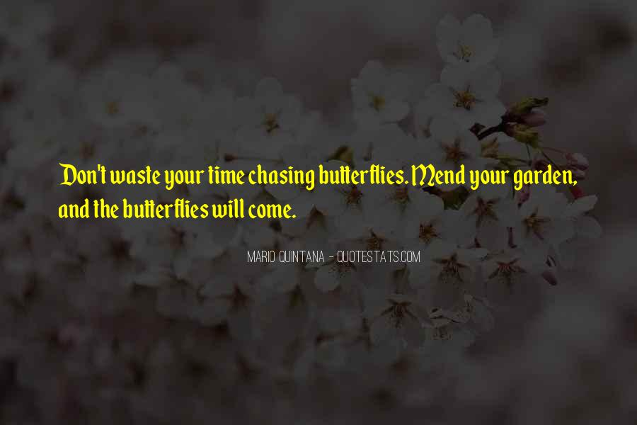 Quotes About Chasing Butterflies #68643
