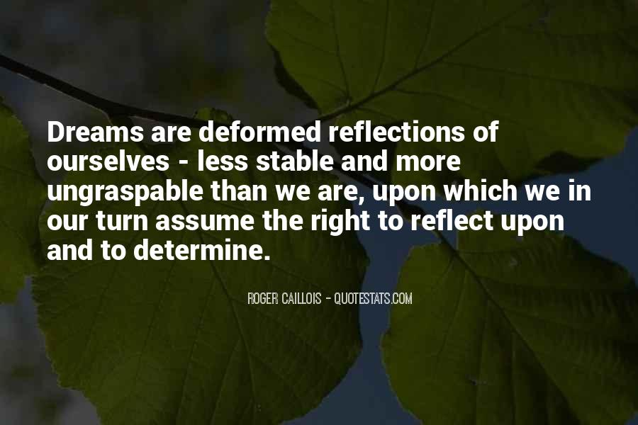 Quotes About Our Reflections #446306
