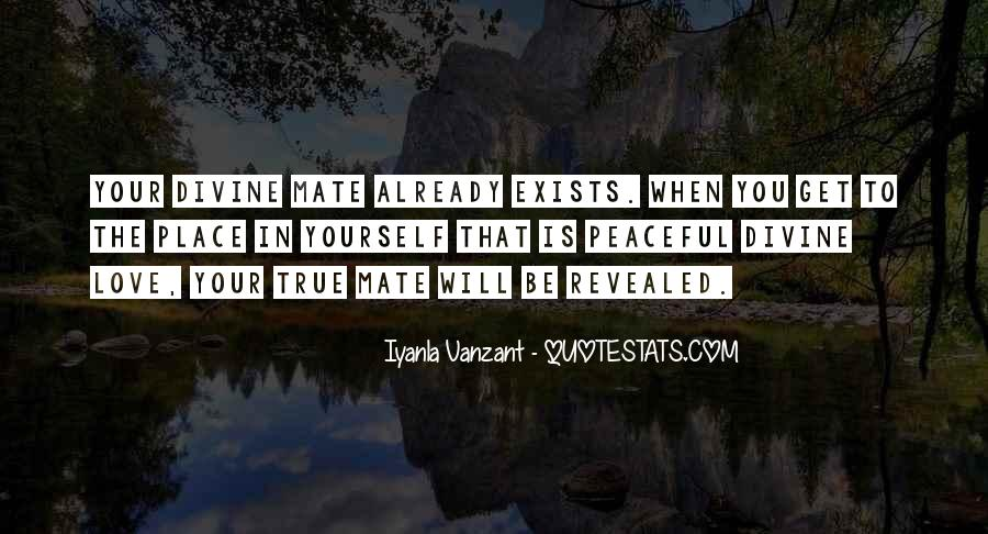 Quotes About Soulmate #344865