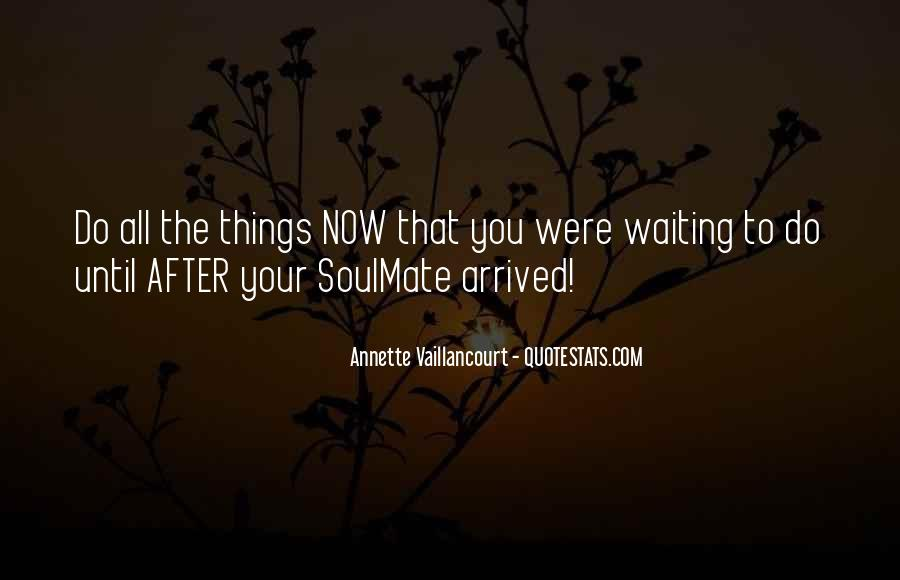 Quotes About Soulmate #51869