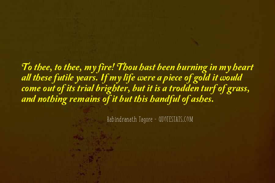 Quotes About Trial By Fire #1081427