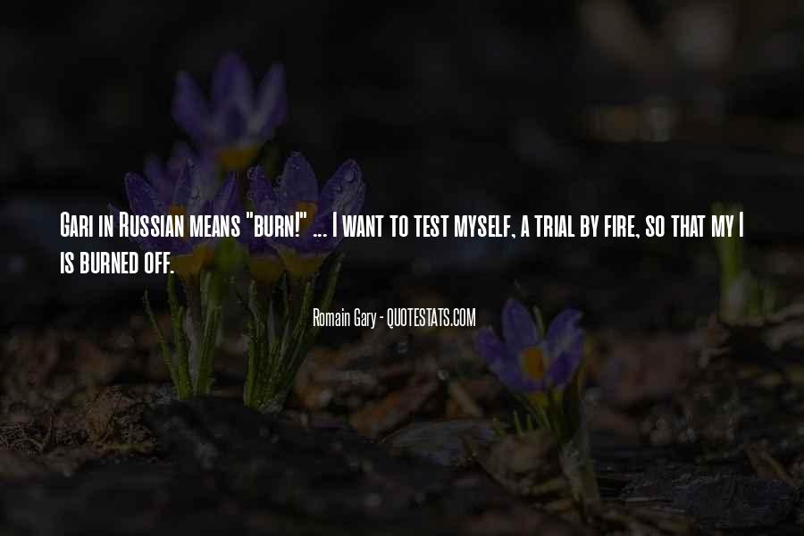 Quotes About Trial By Fire #1158444