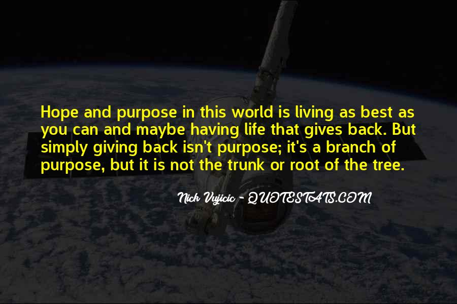 Quotes About Not Having A Purpose In Life #395856